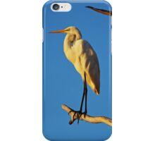 Intermediate Egret  iPhone Case/Skin