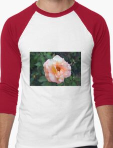 Beautiful delicate pink rose on green leaves background. Men's Baseball ¾ T-Shirt