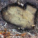 Rock Heart by Truenature