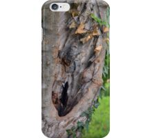 Tree bark detail, natural background. iPhone Case/Skin
