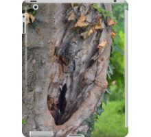 Tree bark detail, natural background. iPad Case/Skin