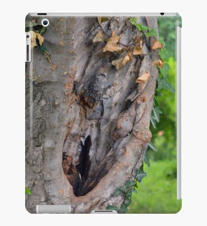 Tree bark detail, natural background. iPad Case/Skin