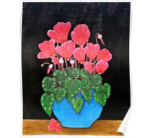 Red Cyclamen Poster