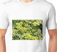 Natural background with small yellow green leaves. Unisex T-Shirt