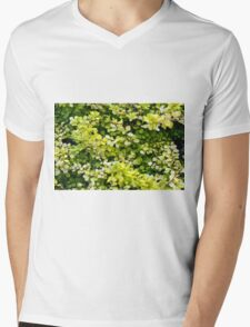 Natural background with small yellow green leaves. Mens V-Neck T-Shirt