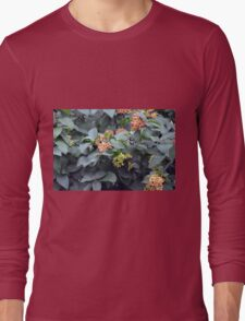 Tree branches with buds. Long Sleeve T-Shirt
