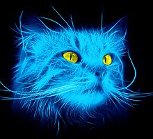 Blue Cat by Fractalesque