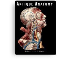 Antique Anatomy Logo Canvas Print