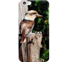 Montville Kookaburra iPhone Case/Skin