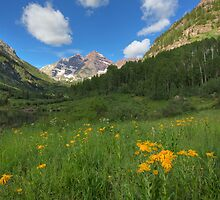 Maroon Bells Images - Colorado Sunflowers and the Maroon Bells on a Summer Morning 1 by RobGreebonPhoto