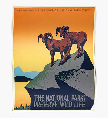 National Parks - Vintage Travel Poster Poster