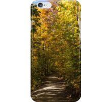 Sun Dappled Autumn Path - Enjoying a Sunny Forest Walk iPhone Case/Skin