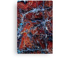 Fragile 507 Canvas Print