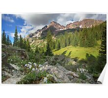 Maroon Bells Images - Columbine and the Bells on a July Morning 1 Poster