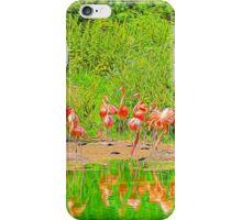 Pretty Flamingos iPhone Case/Skin