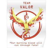 Pokemon Go Team Valor Team Red Pokemon Go 2016 New Game Poster