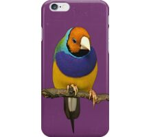 Gouldian Finch, Purple iPhone Case/Skin