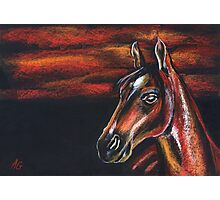 Red horse_Pastel painting_My favorite animals Photographic Print