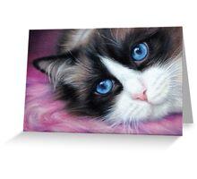 Ragdoll Cat Blank Card Greeting Card