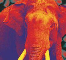 Elephant Funk beans Sticker