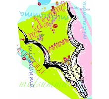 Midsumma rams skull Photographic Print