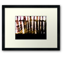 Blinds and Curtains Framed Print