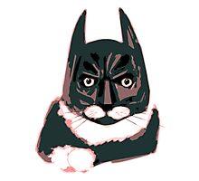 Cat - Batman Photographic Print