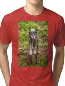 Called TO Order Tri-blend T-Shirt