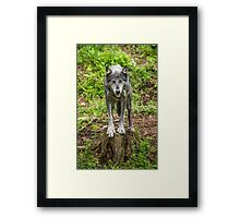 Called TO Order Framed Print