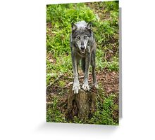 Called TO Order Greeting Card