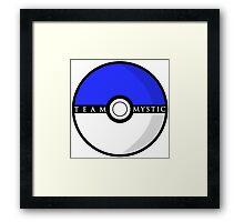 Team Mystic Poké Ball | Pokémon Go Framed Print