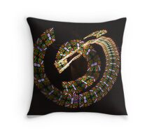 OCF Nightscapes '14-23 Throw Pillow