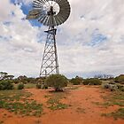 Outback Windmill by Linda Lees