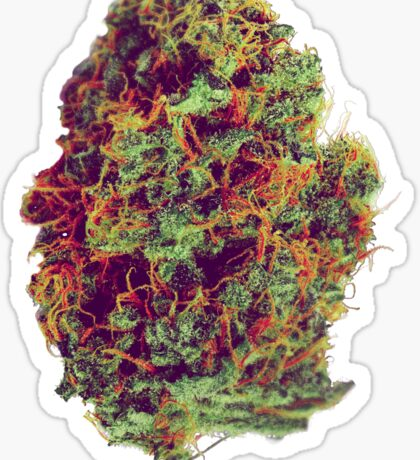 Sticky Bud #23 Sticker