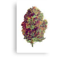 Sticky Bud #23 Metal Print