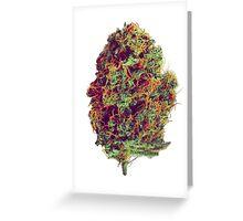 Sticky Bud #23 Greeting Card