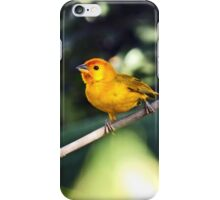 Yellow bird iPhone Case/Skin