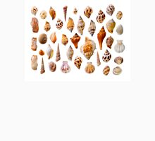Assorted seashells Unisex T-Shirt