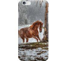 Snow Spirit (Grunge) iPhone Case/Skin