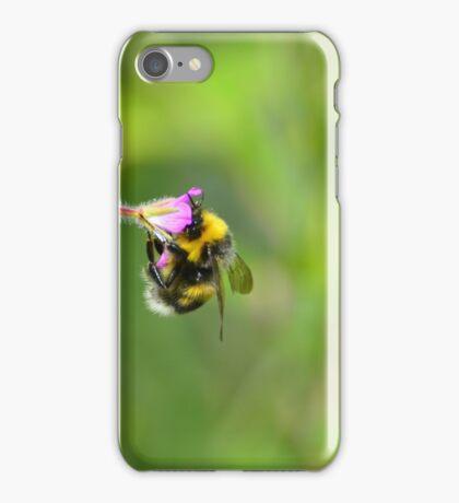 Finding Honey iPhone Case/Skin