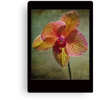 Kaleidoscope Orchid Card Canvas Print