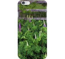 Lupine Fencerow iPhone Case/Skin