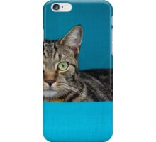 Hanging Out in the Lanai iPhone Case/Skin