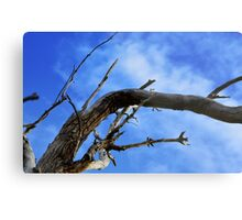 Bending with the storm Metal Print
