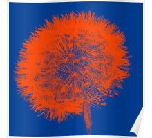 Dandelion Pop in Orange Poster