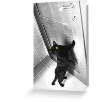 Polyphemus Greeting Card