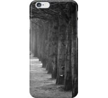 Misty Tuileries iPhone Case/Skin
