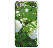 White Flowers from the Pacific Northwest iPhone Case/Skin