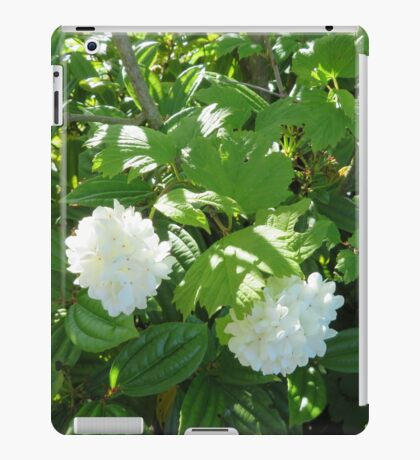 White Flowers from the Pacific Northwest iPad Case/Skin