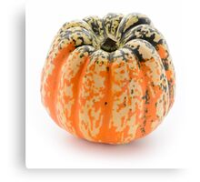Single decorative pumpkin, isolated on white background Canvas Print
